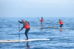 The-Crossing-SUP-Cape-Town-102